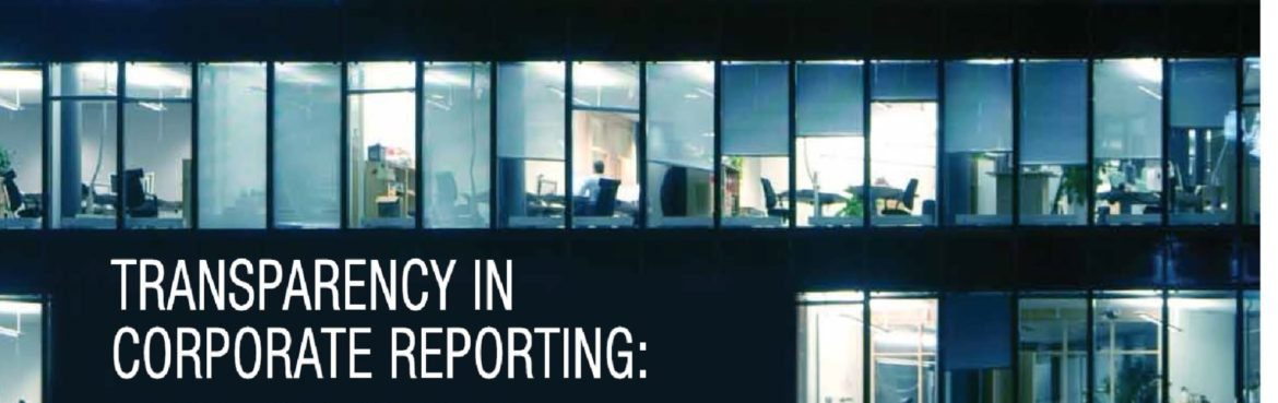 Transparency in business reporting tool